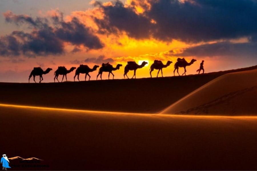 2 days Sahara desert tour from Fes to Marrakech - Morocco desert tours