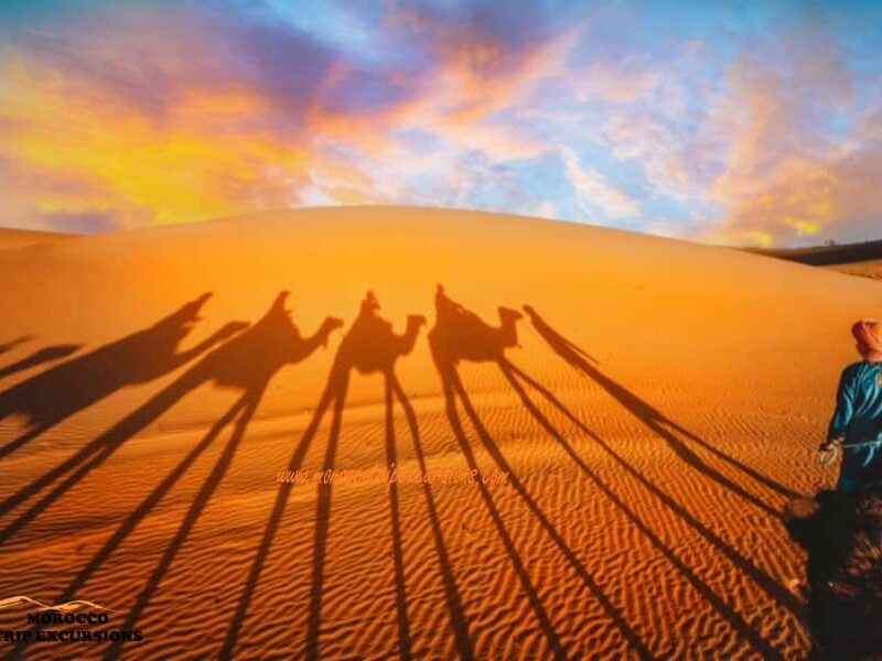 Best 4 days Sahara desert tour from Marrakech to Merzouga