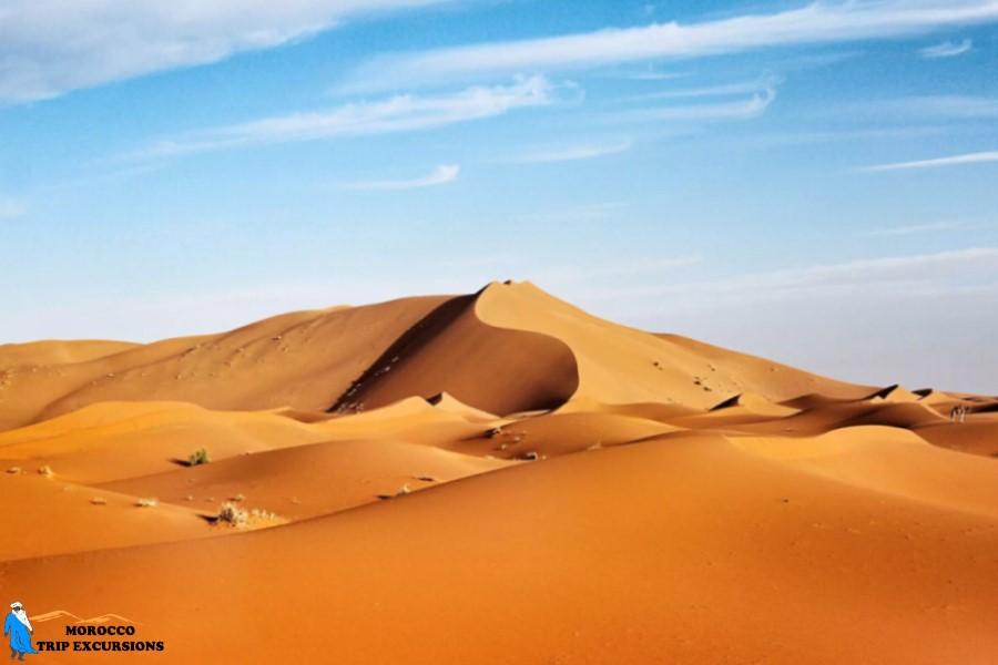 Tour por el sahara 4 días